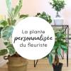 Plante du fleuriste Online