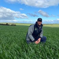 UTILISING WHEAT VARIETY OPTIONS TO ASSIST SPREADING RISK AND BALANCING BOOKS