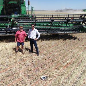 Chief CL Plus commands weed control at Pindar