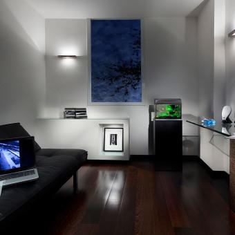 חדר עבודה בעיצוב מנימליסטי עם פרקט כהה וספה שחורה