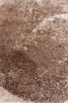 אלמנטים מתכתיים במערבולת חותכים את מימדי שטיח זה ומשאירים מקום אטמוספרי לדמיון. ניתן להשיג בצבע כחול מים וחום נחש.