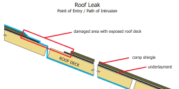 Roof Leak Path of Intrusion