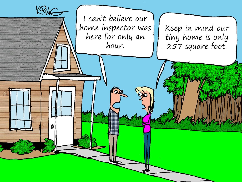 A Tiny Home Inspection Cartoon