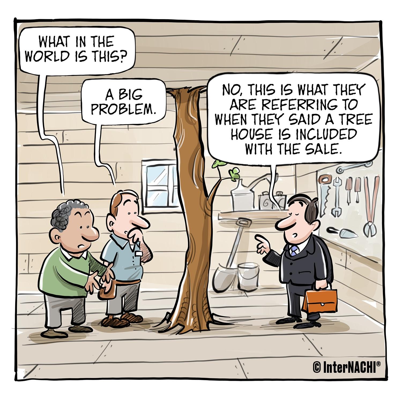 Tree House Included Cartoon