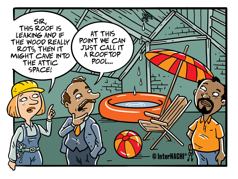 Attic Indoor Pool Cartoon
