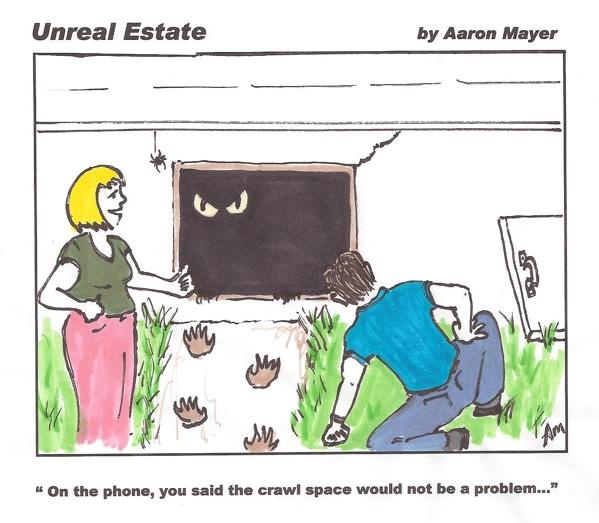 Crawlspace Inspection Cartoon