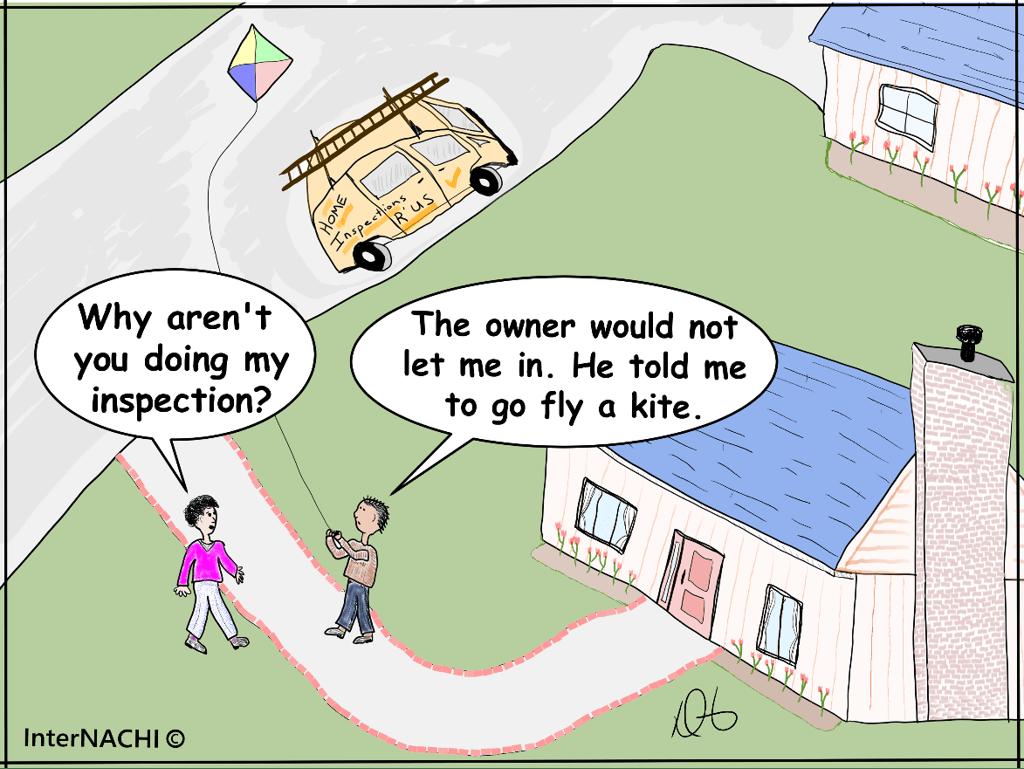 Go Fly a Kite Cartoon