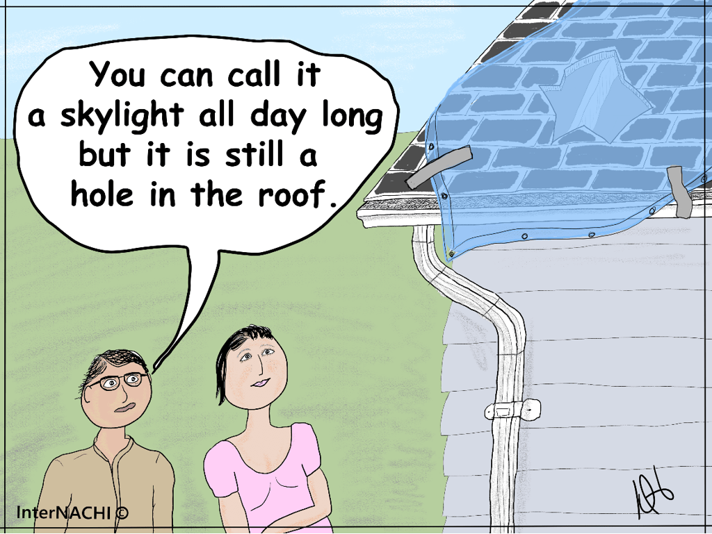 Impromptu Skylight Cartoon