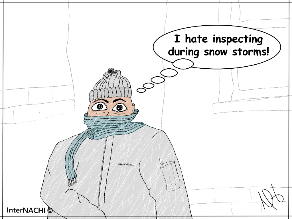 Inspecting in a Snow Storm Cartoon