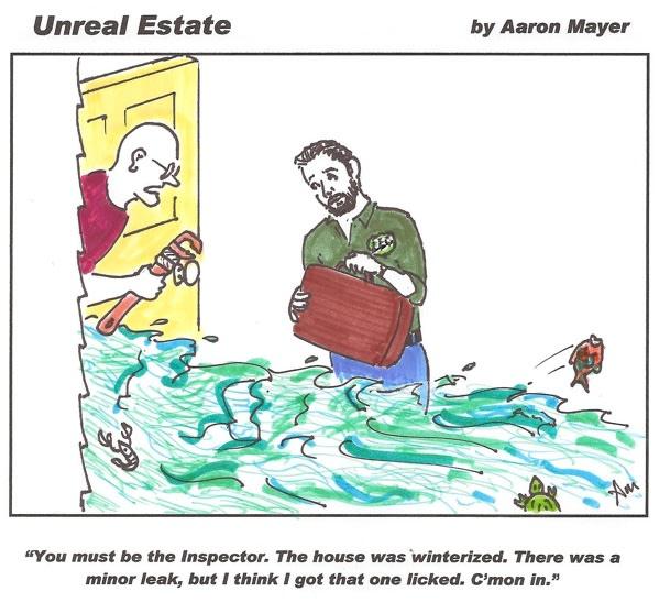 A Minor Leak Cartoon
