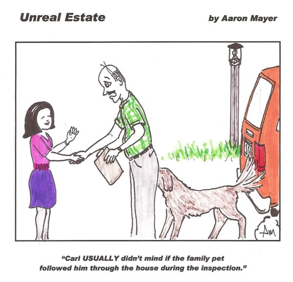 Pets at the Inspection Cartoon