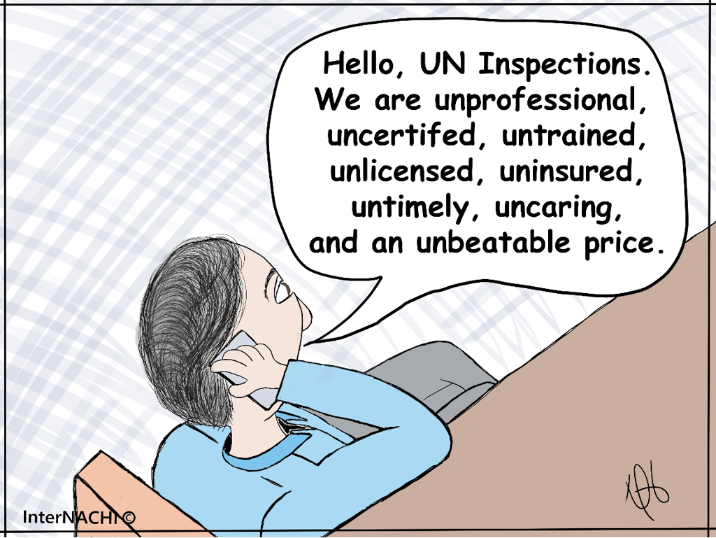 UN Inspections Cartoon