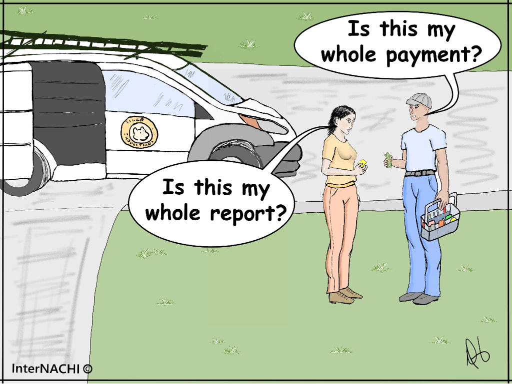 Whole Report, Whole Payment Cartoon