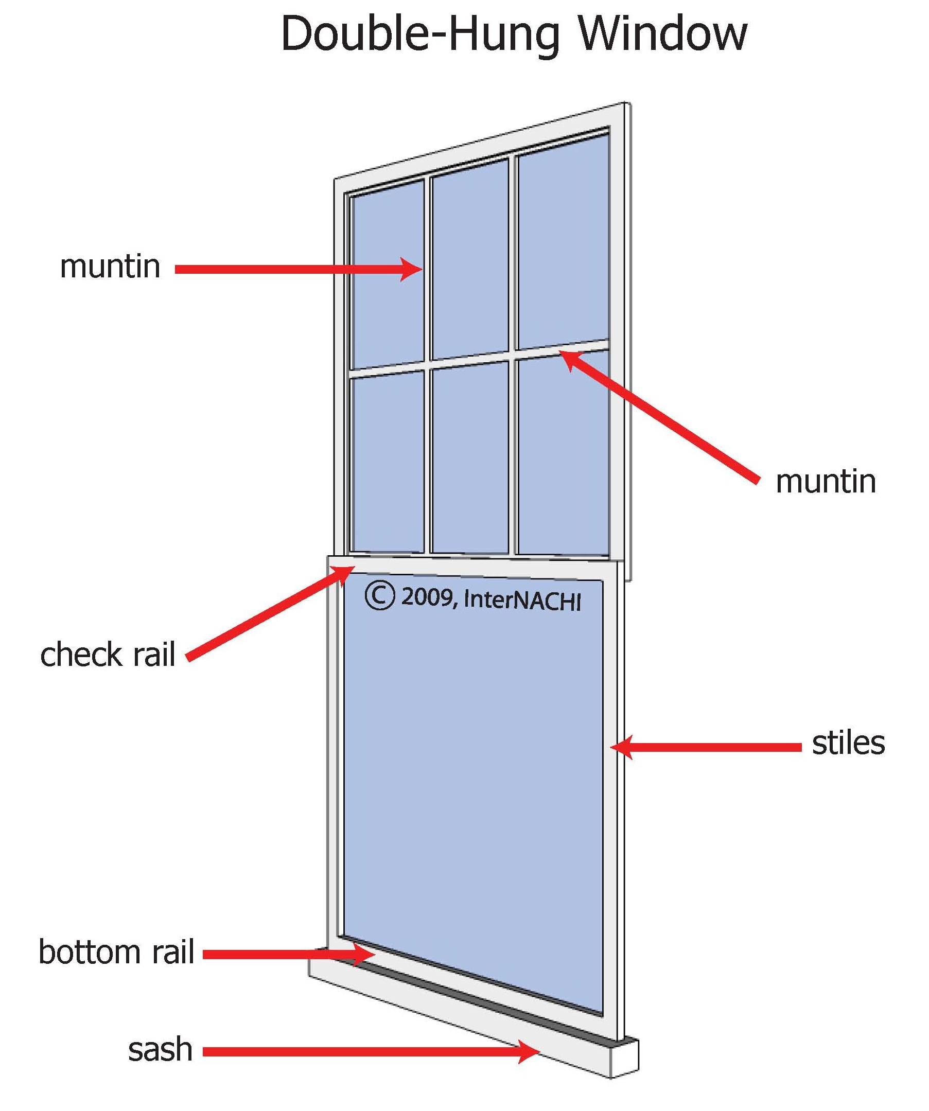 Double-hung windows have two operable sashes that move vertically in the frame.