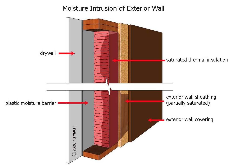 Moisture intrusion of an exterior wall.