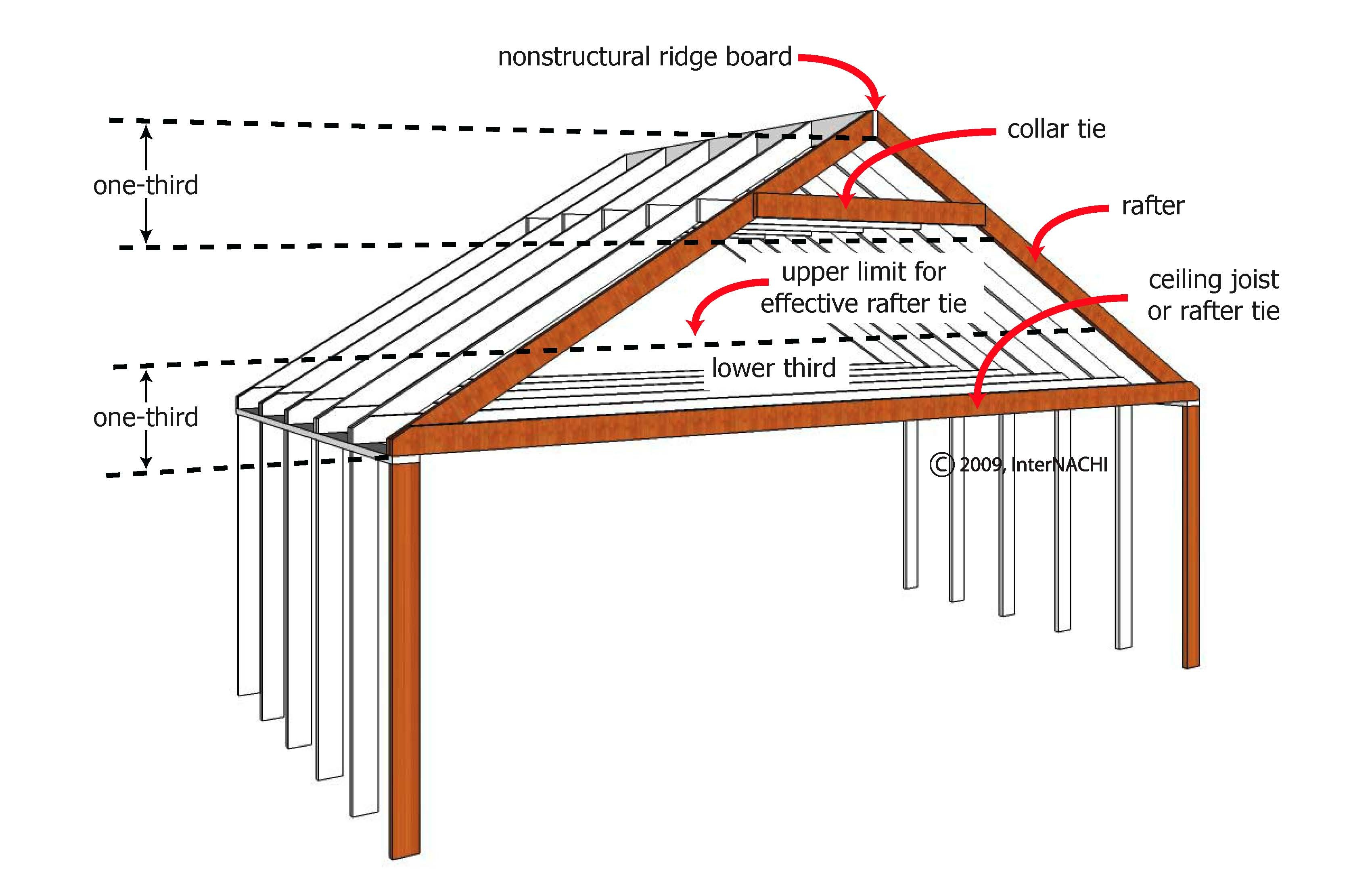 Collar and rafter ties.