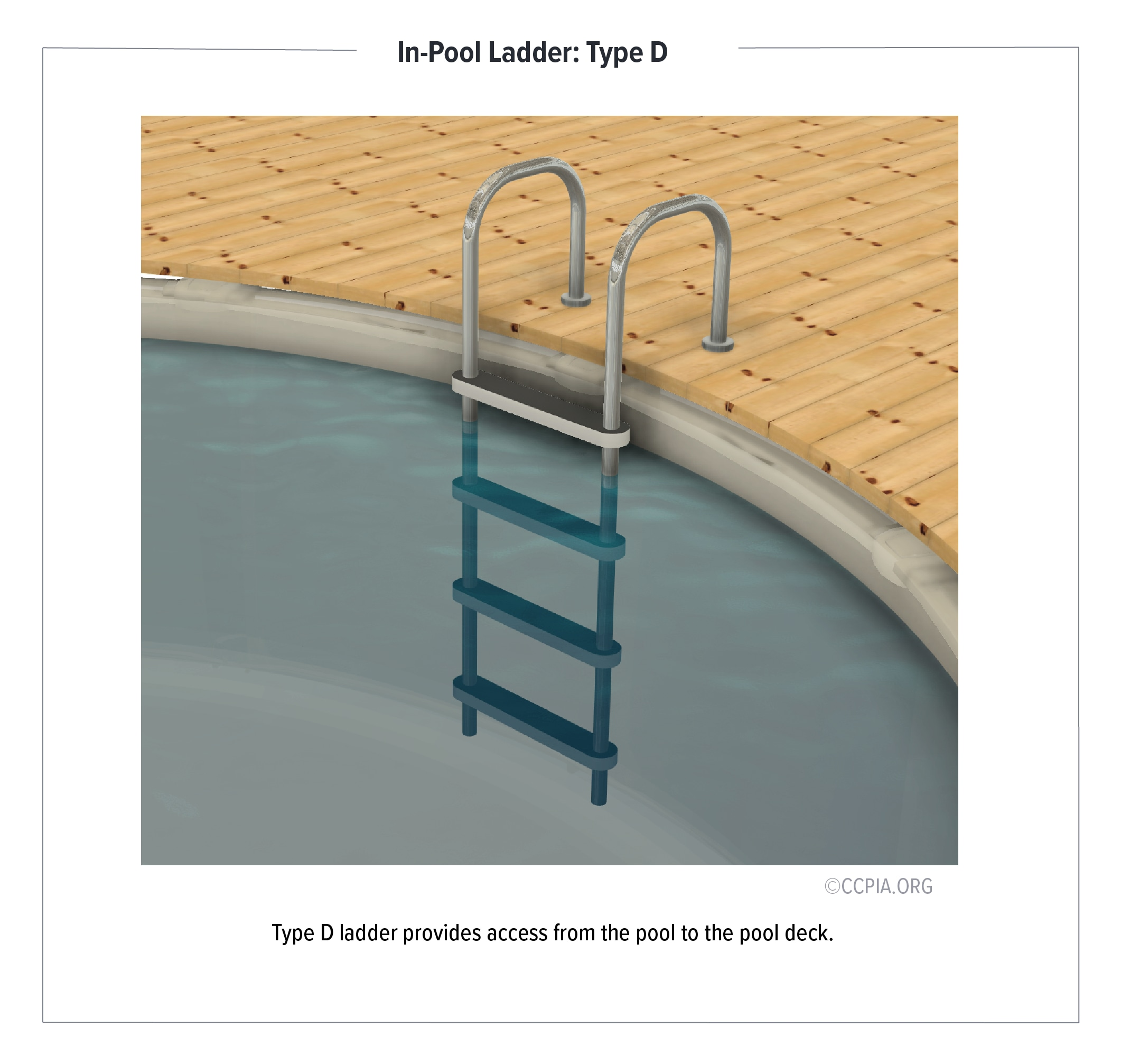 In-Pool Ladder: Type D ladder provides access from the pool to the pool deck.