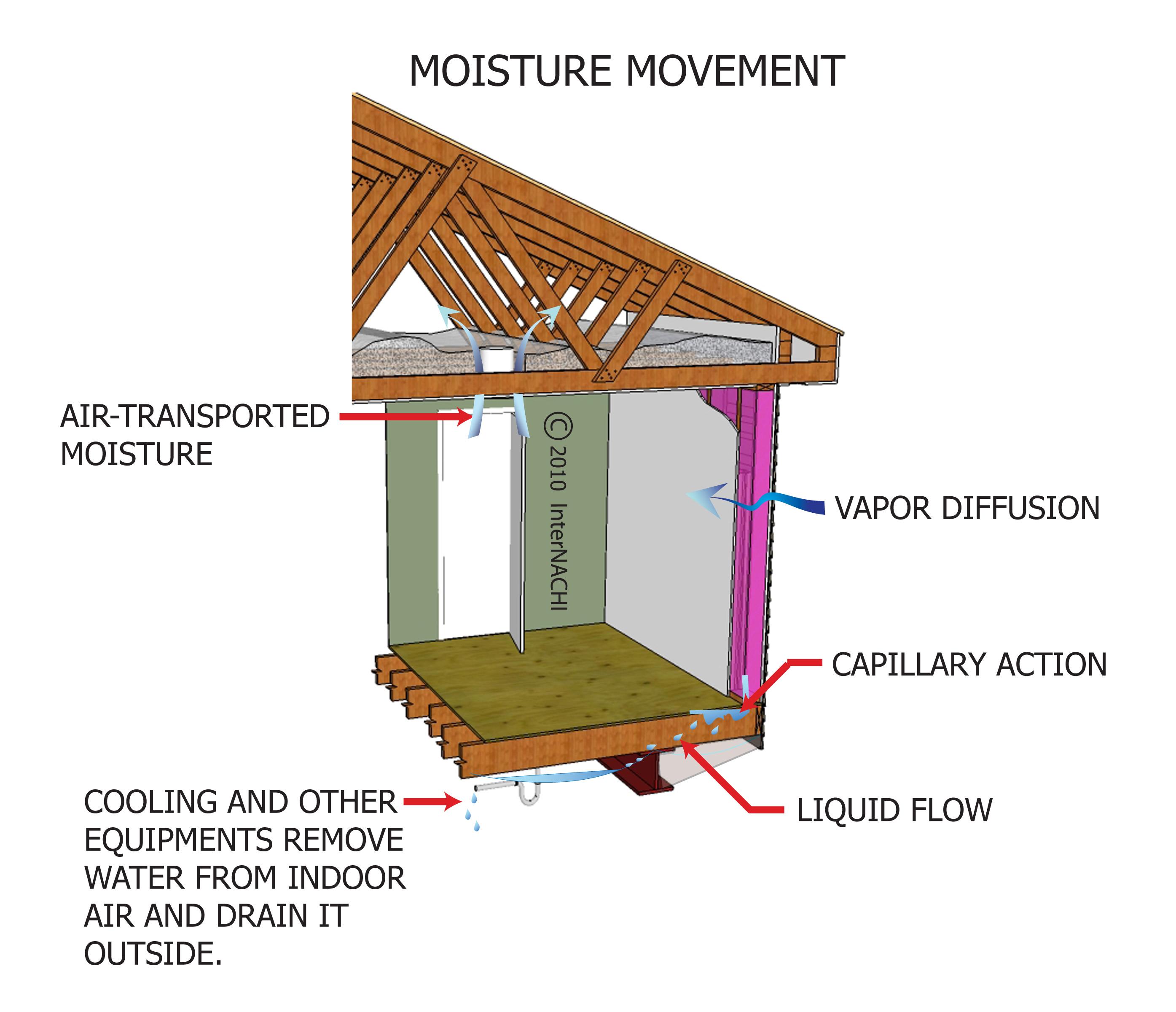 Moisture movement.