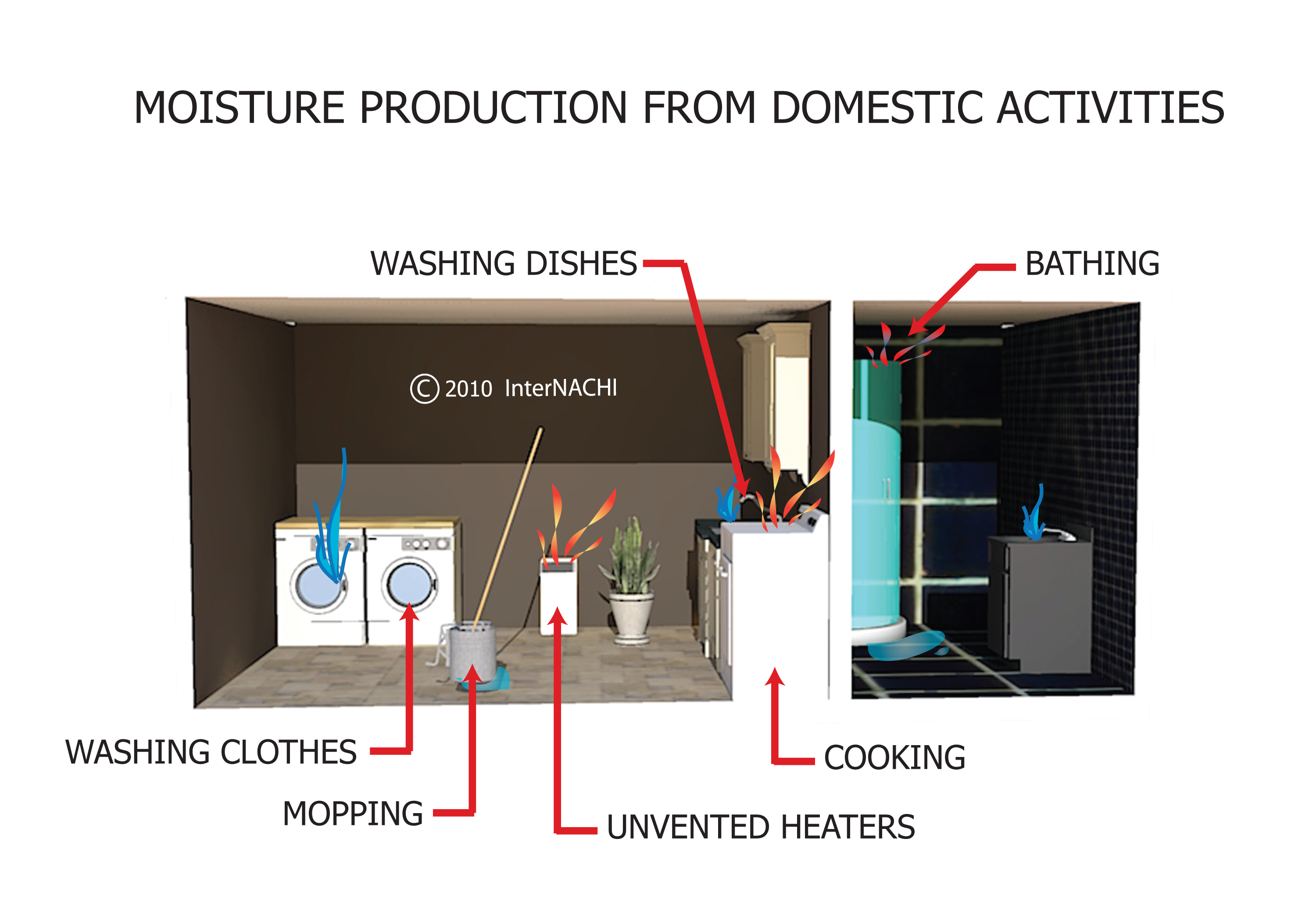 Moisture production from domestic activities.