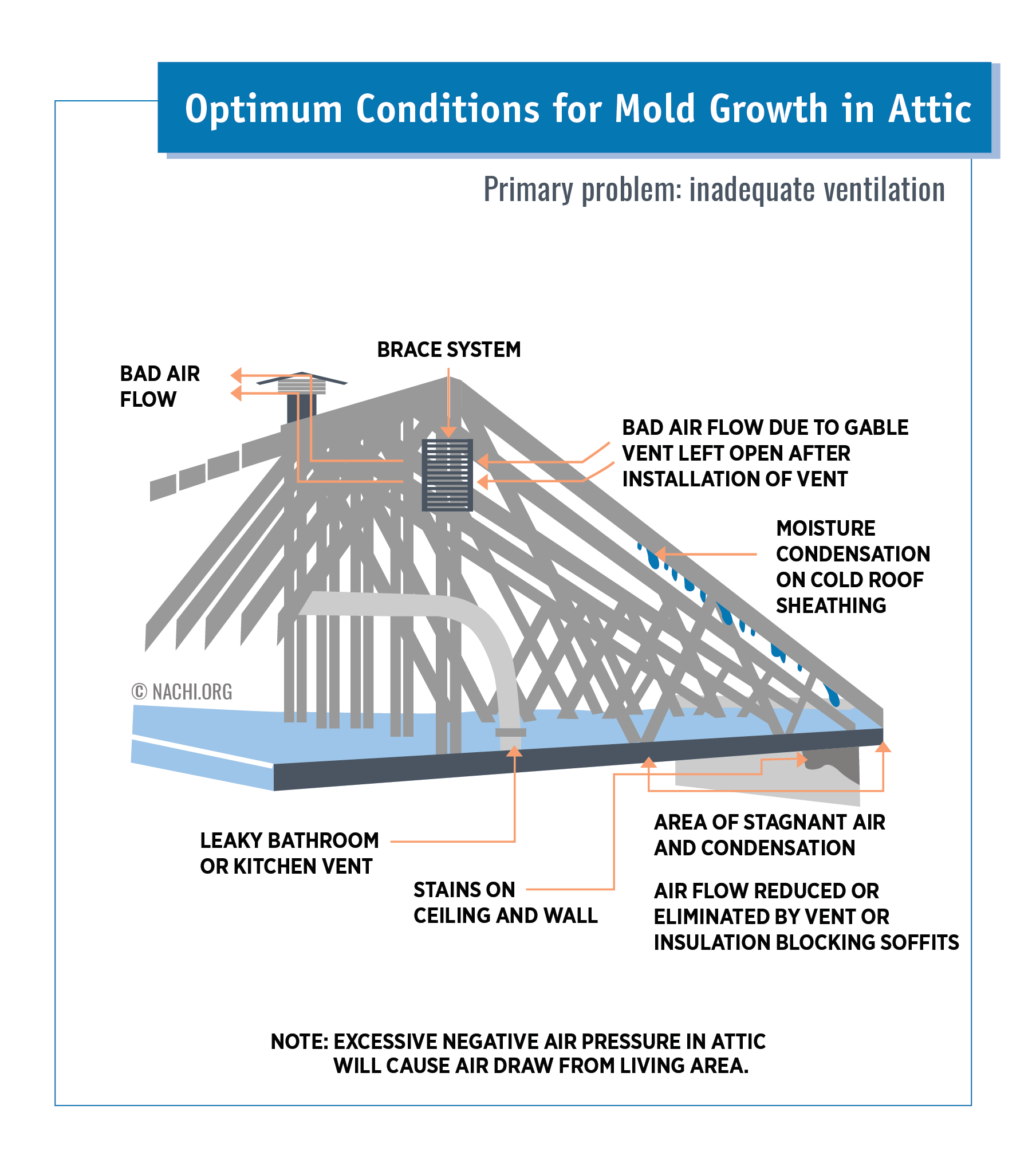 Optimum Conditions for Mold Growth in Attic.