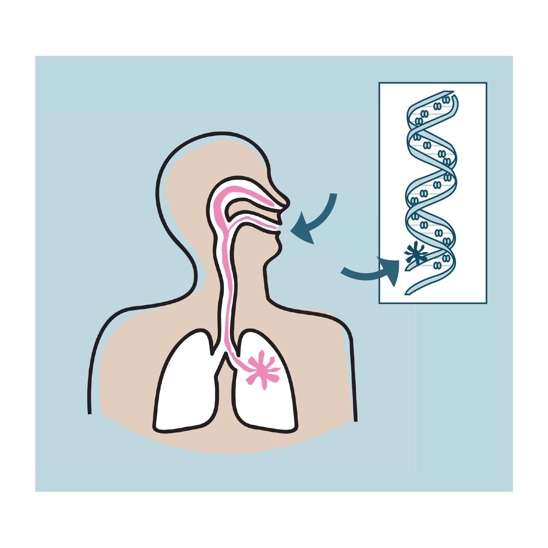 Genetic Damage Caused by Radon