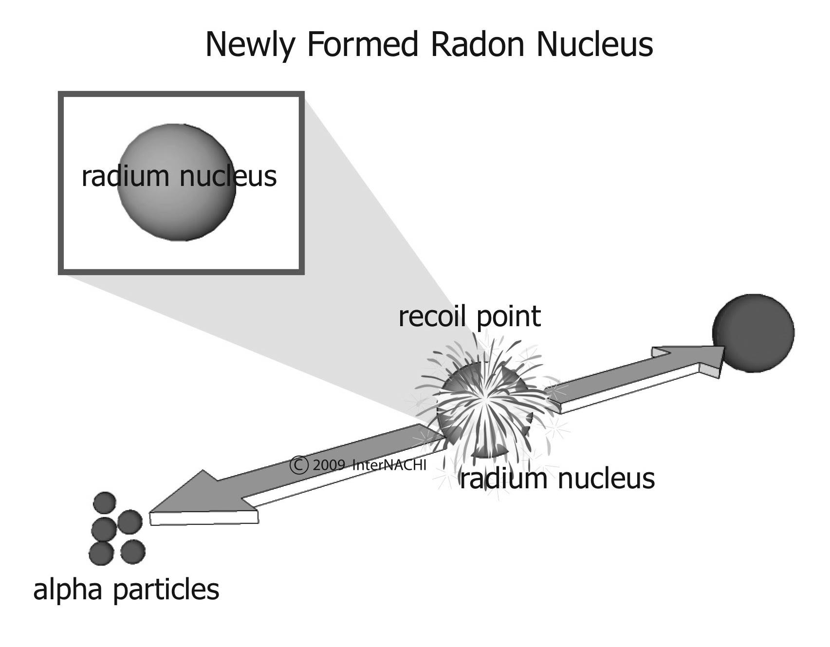 Newly formed radon nucleus.
