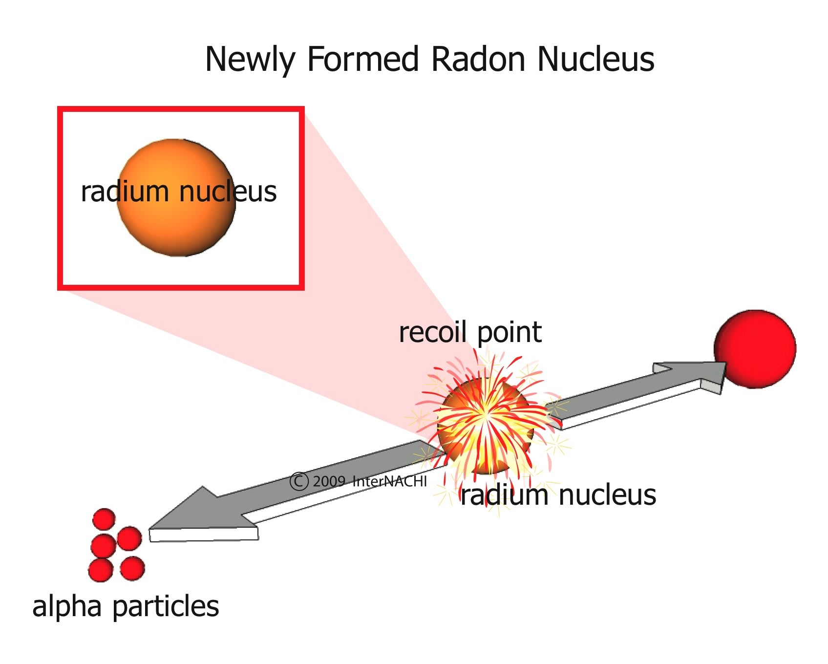 Newly formed radon nucleus.