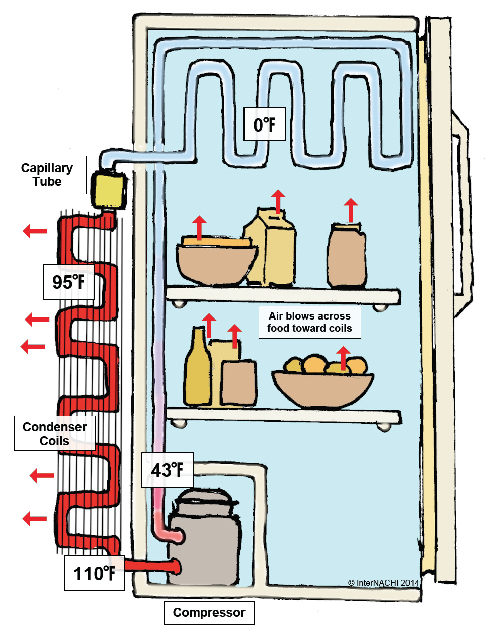 This illustration is of a refrigerator, its major components, and operation cycle.