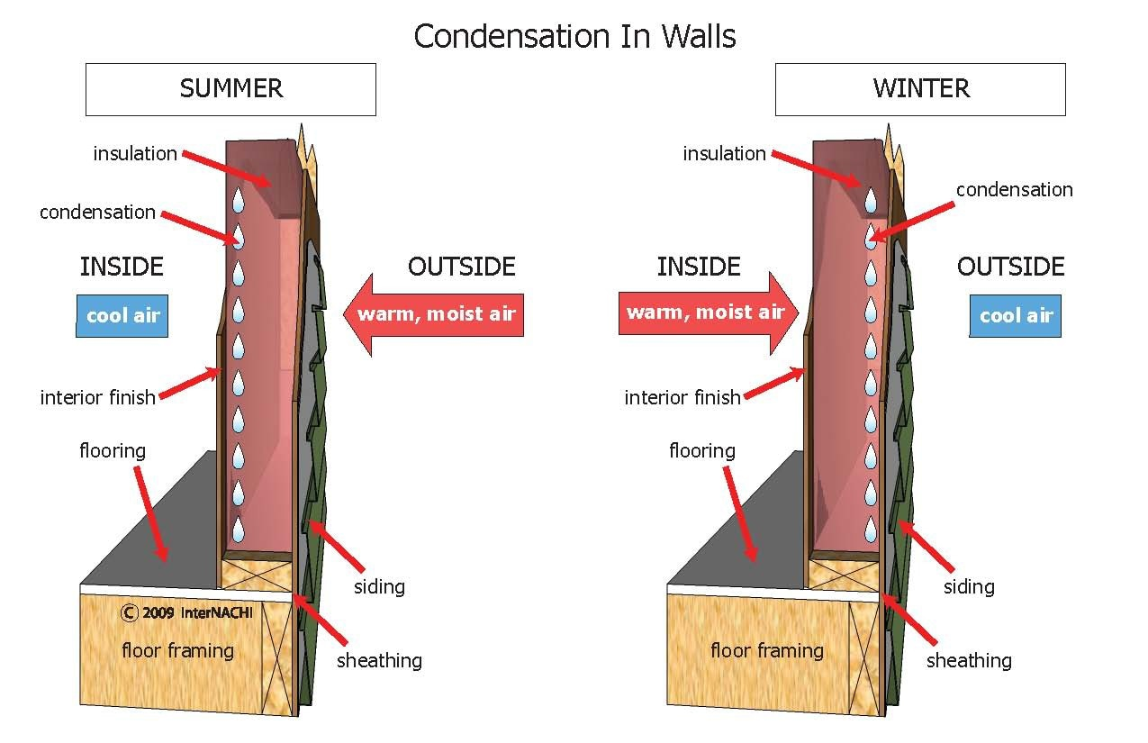Condensation in walls.