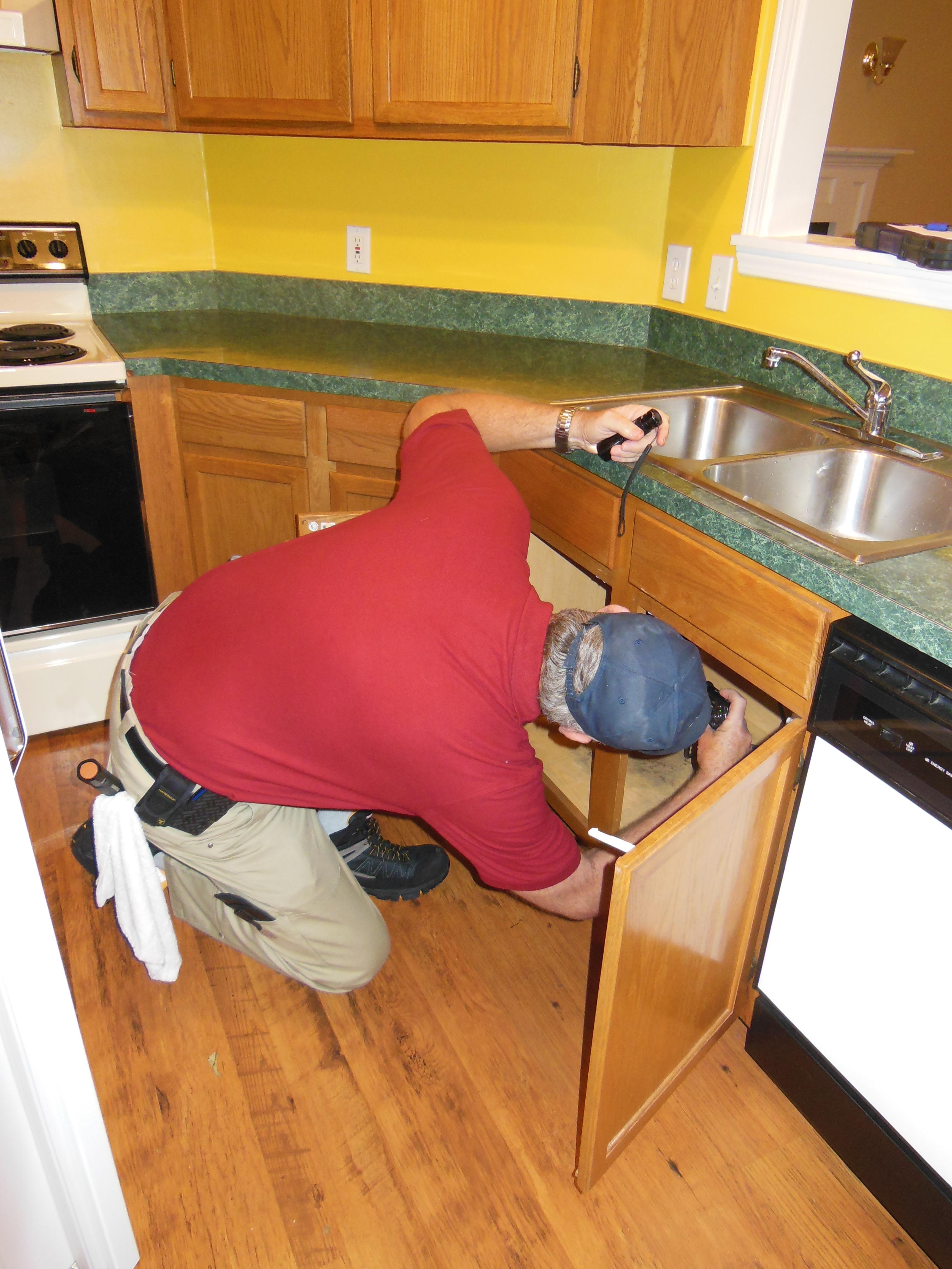 Kitchen inspection.