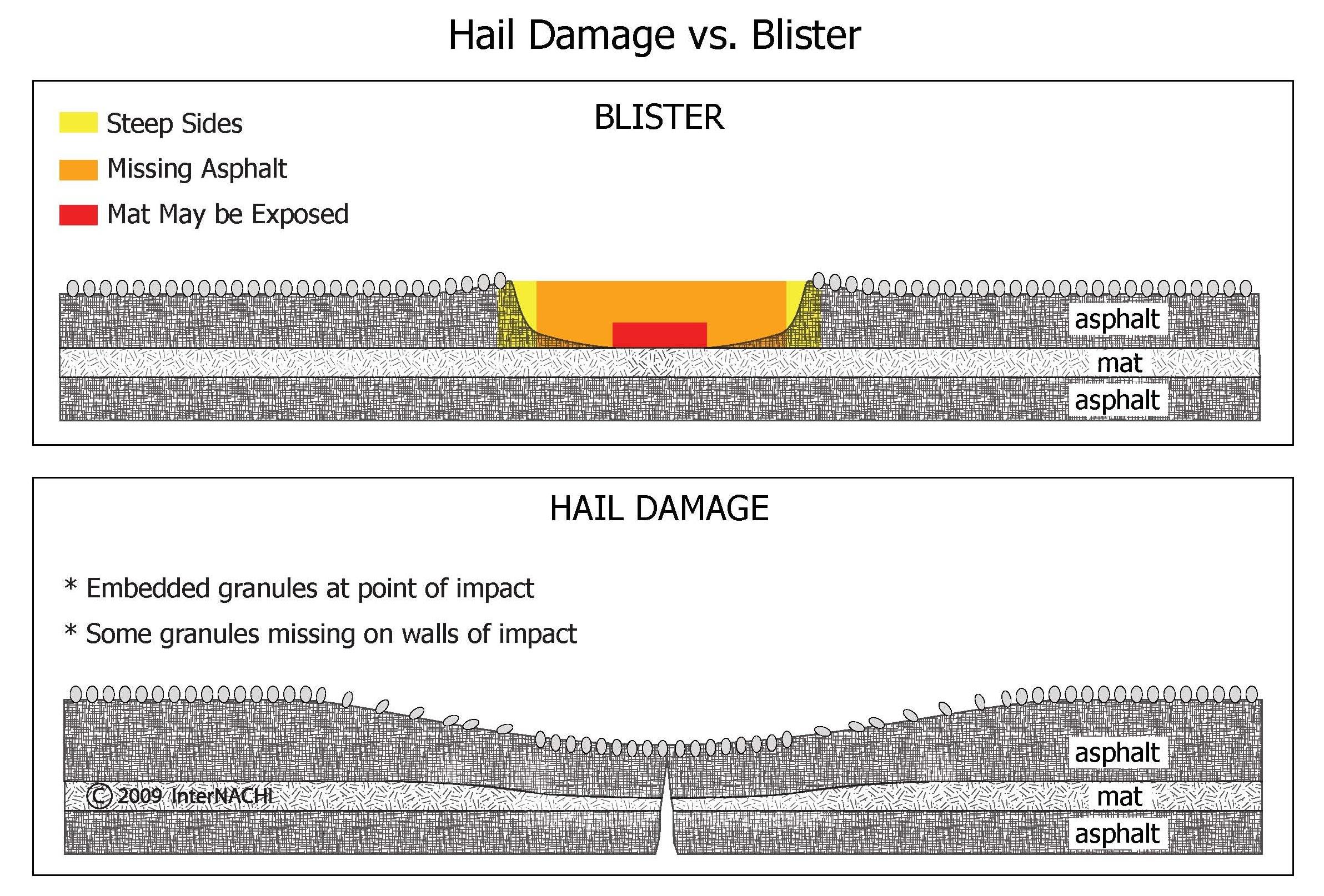 Hail damage vs. blister.