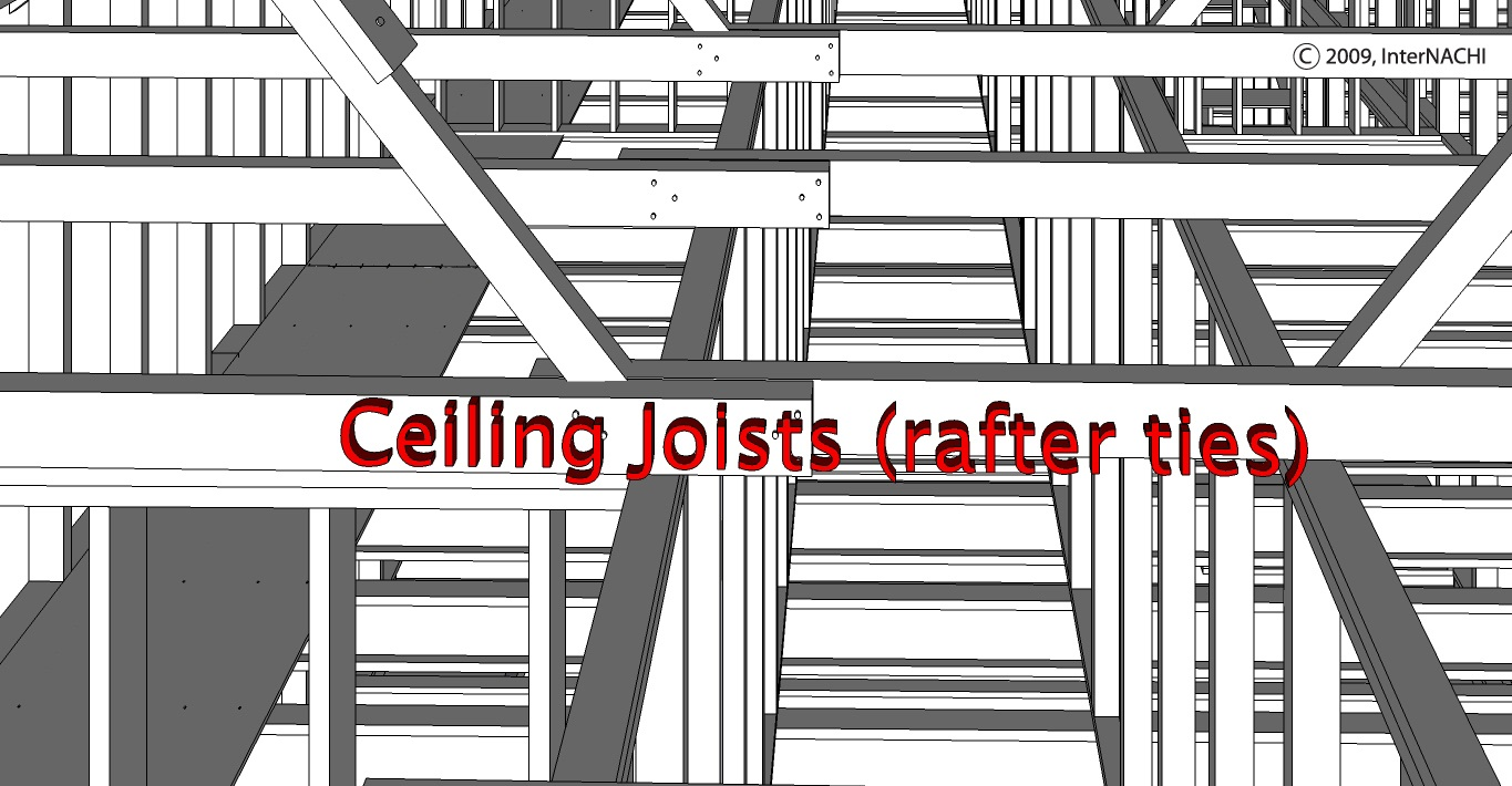 Ceiling joists (rafter ties).