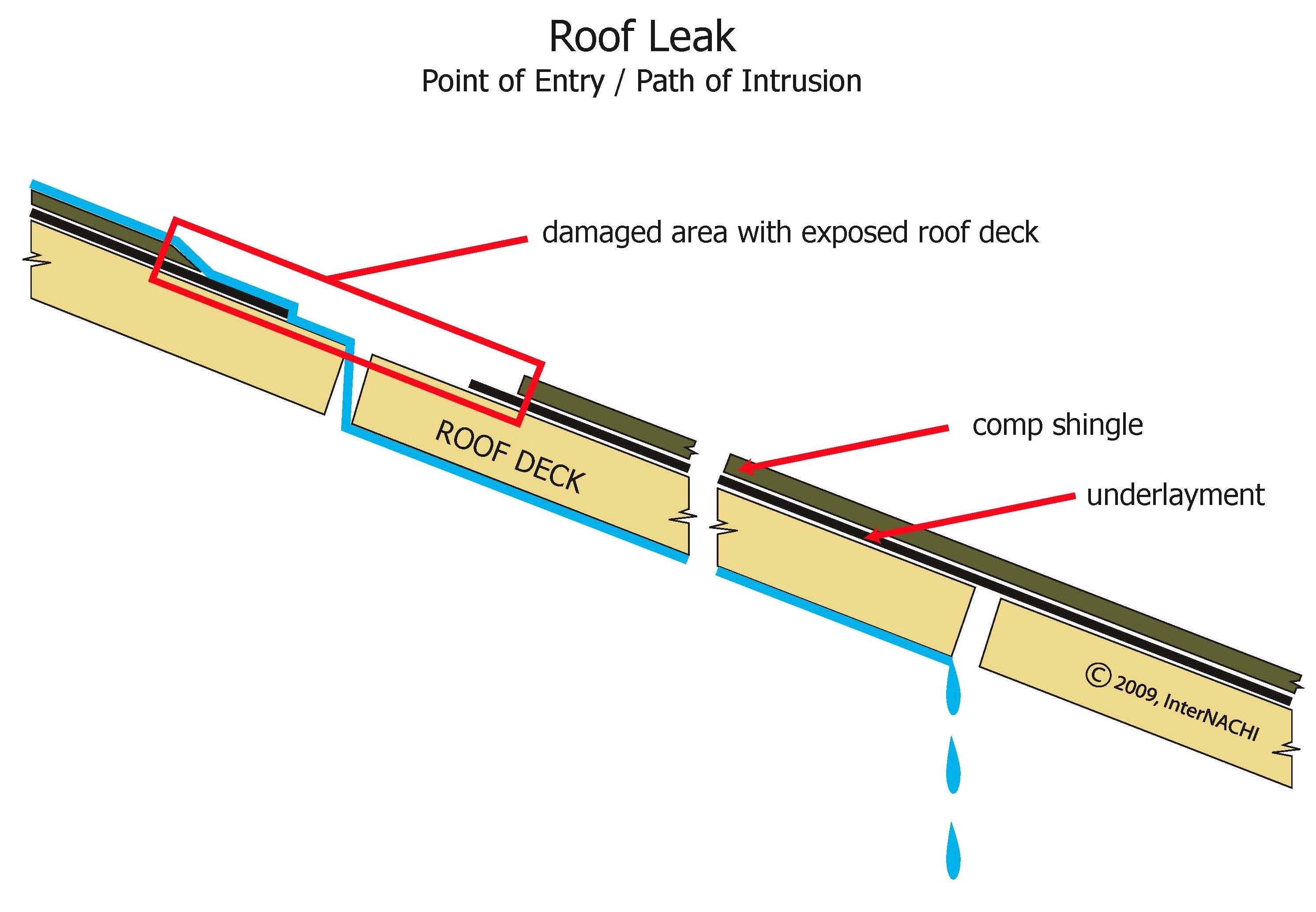 Roof leak path of intrusion.