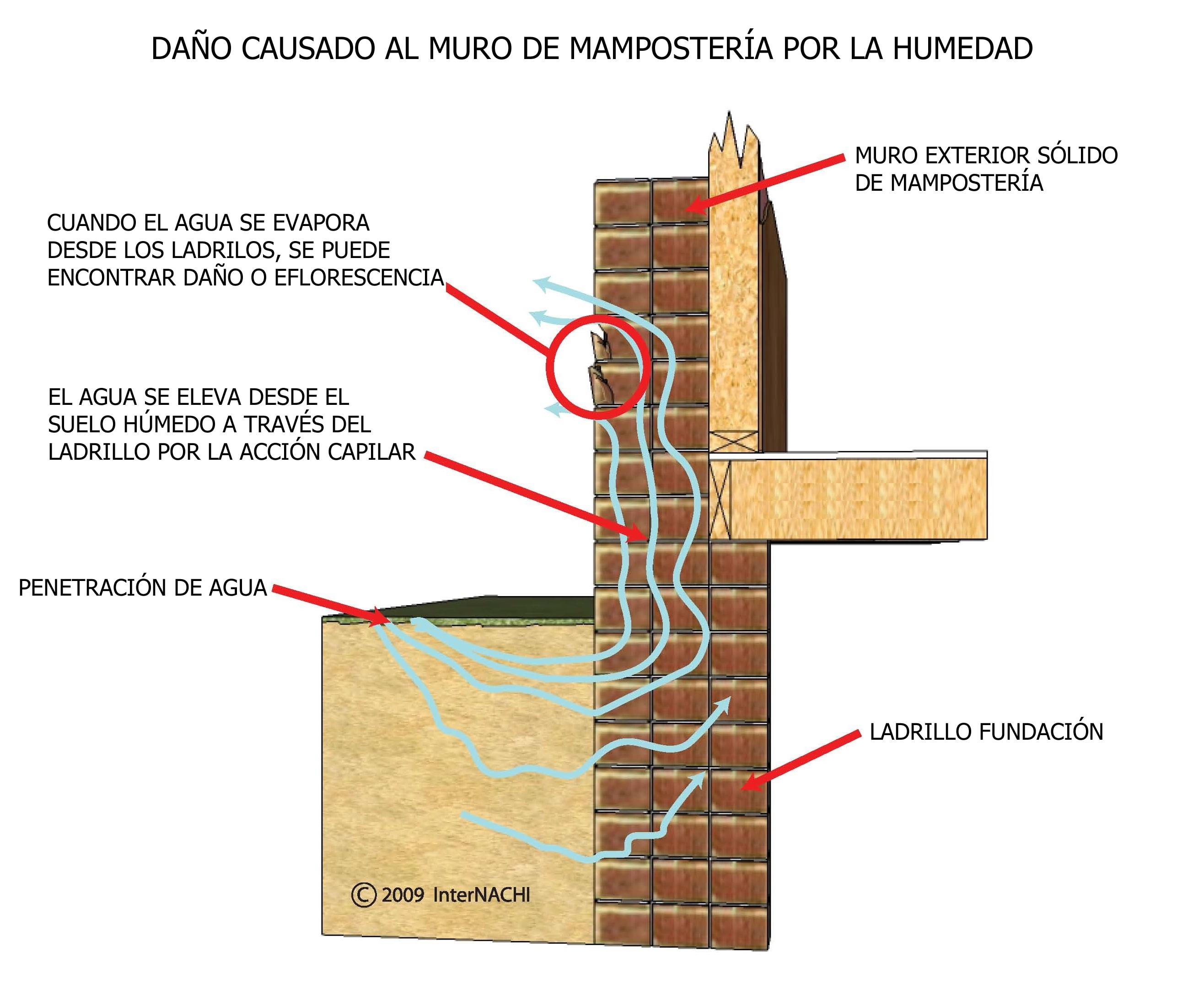 Damage to Masonry Wall Caused by Moisture