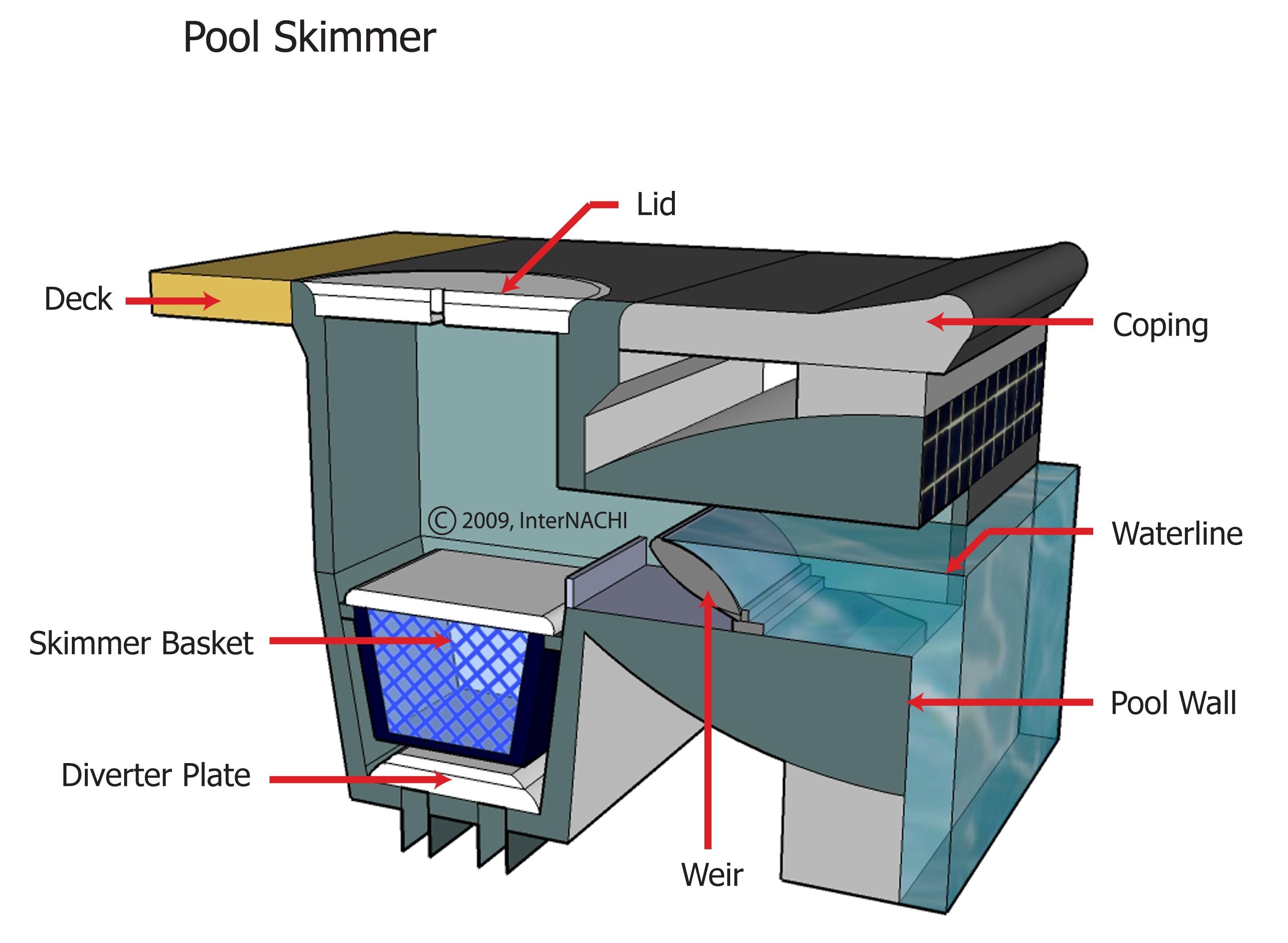 Pool skimmer.