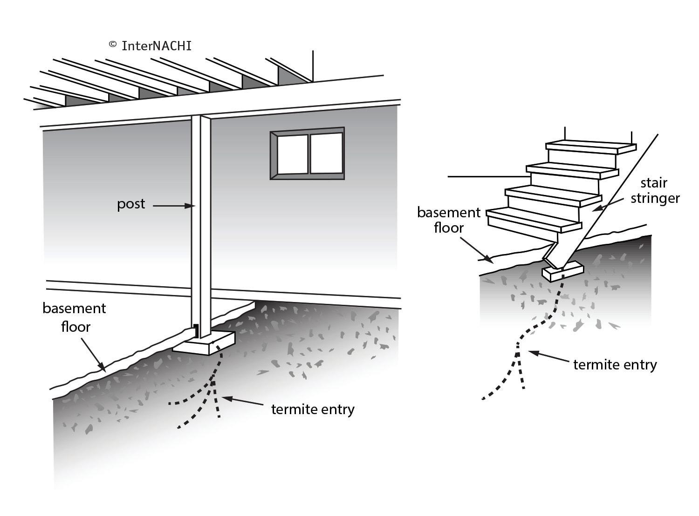 Basement termite entry.