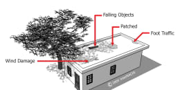 Flat Roof Defects