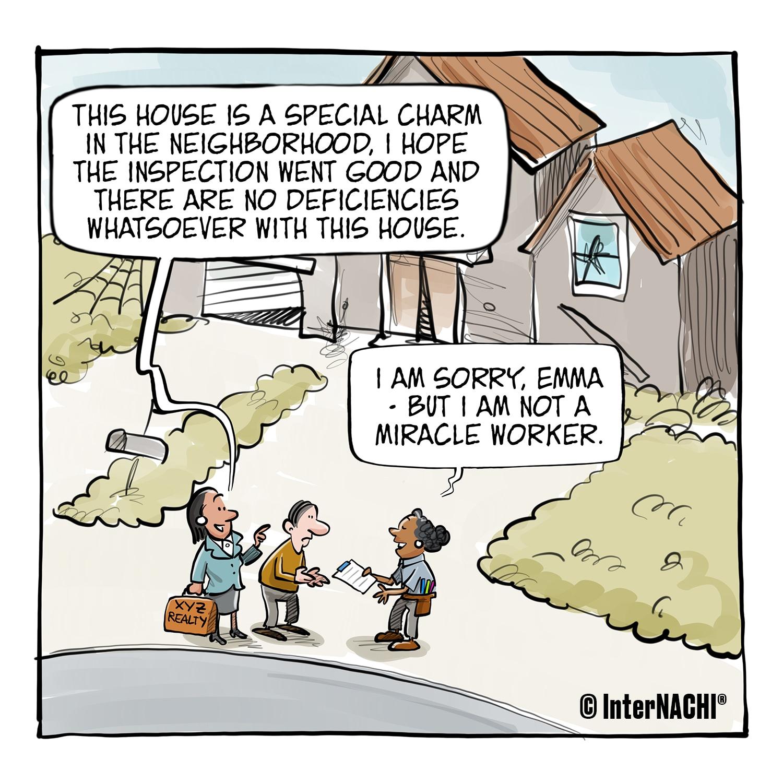 "A Special ""Charm"" in the Neighborhood Cartoon"
