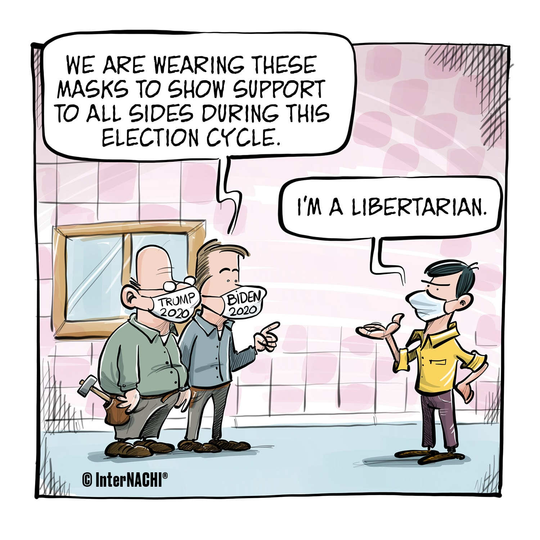 Election Year Cartoon