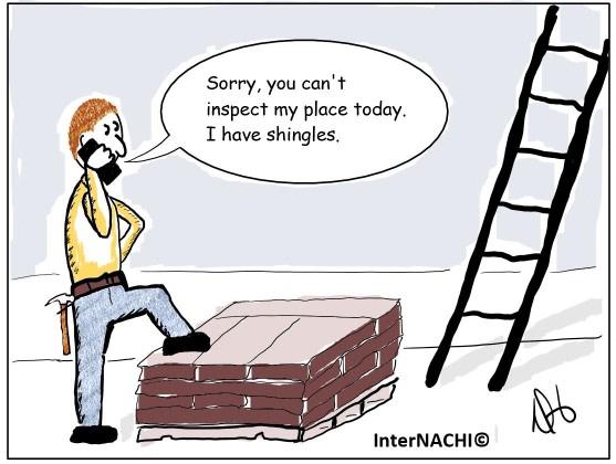 Shingles Cartoon