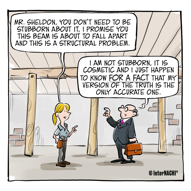 The Experienced Agent Cartoon