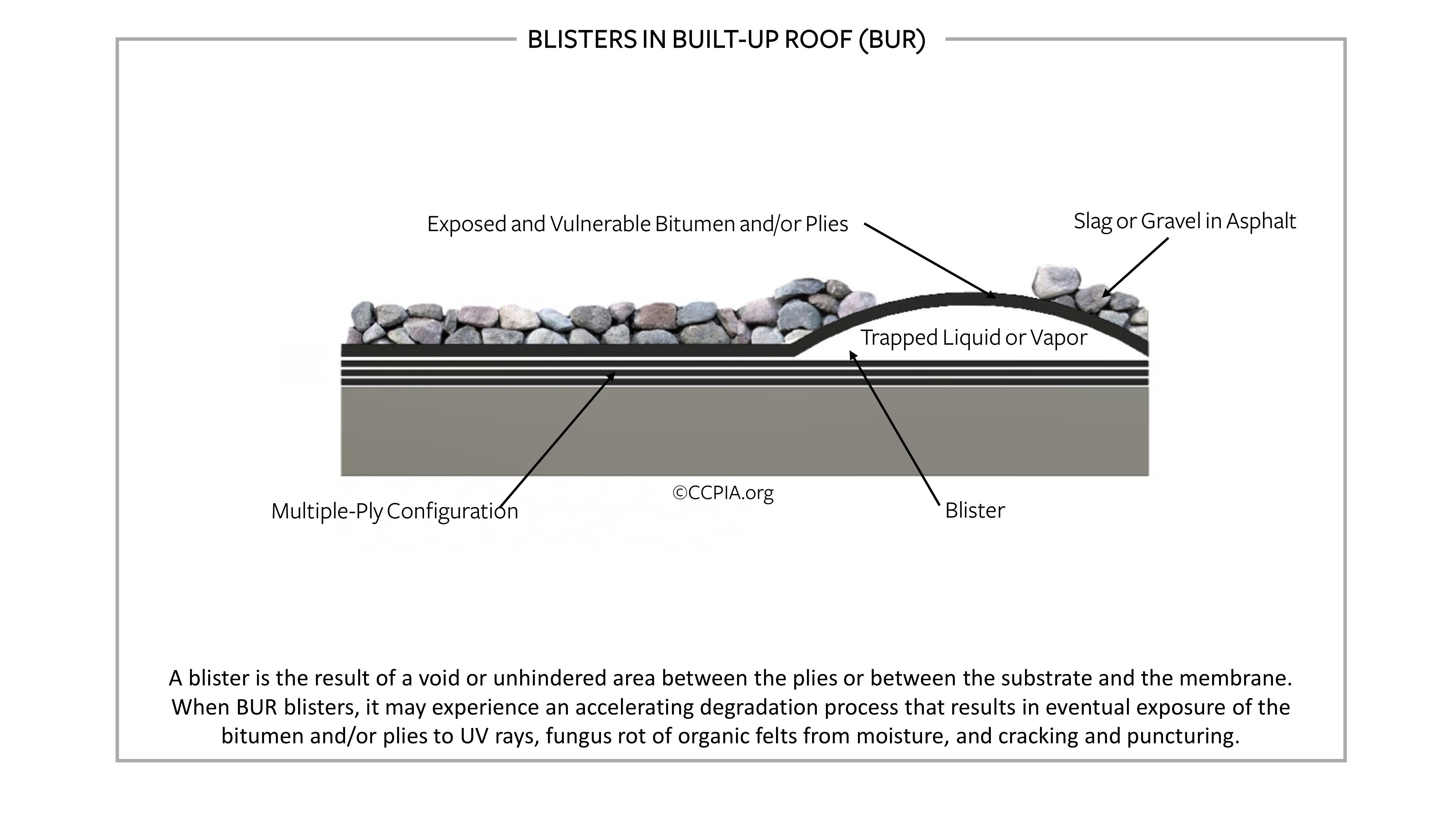 Blisters in built-up roof.