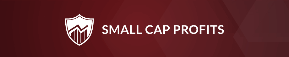 smallCapProfit