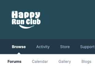 Screenshot of customized Logo