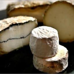 Los primeros quesos se hicieron hace 7.500 años en Europa