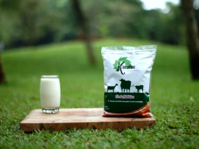 jual [STOCK KOSONG] KATULAC Pakan Ternak Sapi dan Kambing (Feed Additive)