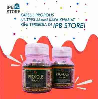 jual Kapsul Propolis Ipb Store