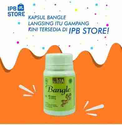jual Kapsul Bangle Ipb Store