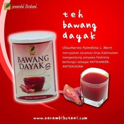Teh Bawang Dayak Isi 12 Ipb Store Healthy & Natural Products Ipb Store