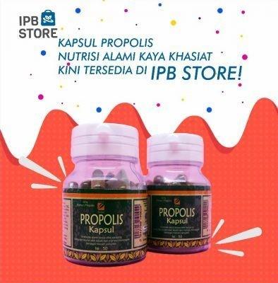 Kapsul Propolis Ipb Store